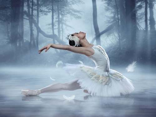 <i>Swan Lake</i> <br>Canada's Royal Winnipeg Ballet <br><i> with Virginia Symphony Orchestra</i>