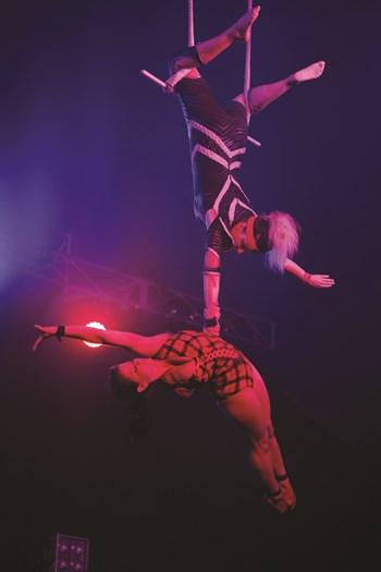 Pants Down Circus